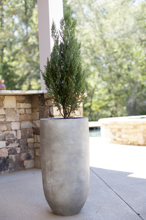 Rough Cement Cylinder Planter - Composite Clay & Terracotta Planters