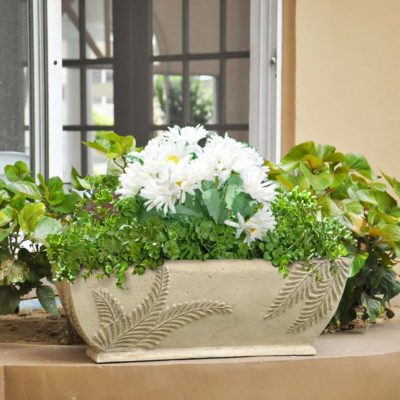 22 in. x 8-1/2 in. Cast Stone Rectangular Fern Planter in Limestone (PF3954FL)