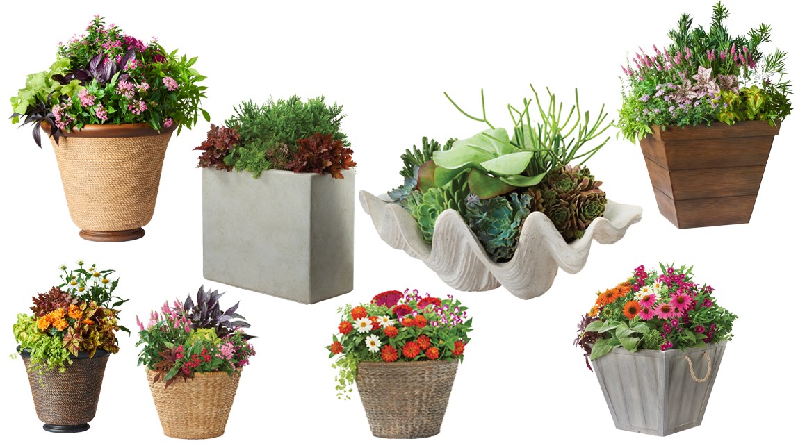 MPG Planters - contact us