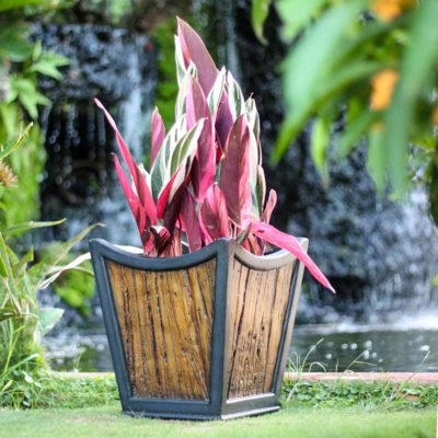 13 in. sq. Black Composite Metal on Wood Tapered Sol Planter (PC7164MW)