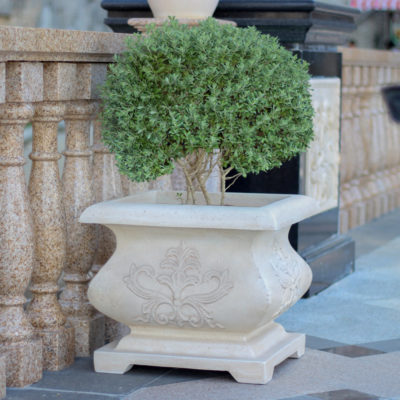21 in. sq. Aged White Cast Stone Bombe Planter (PF4885AW)